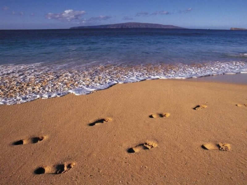 Electronic Trails and Footprints