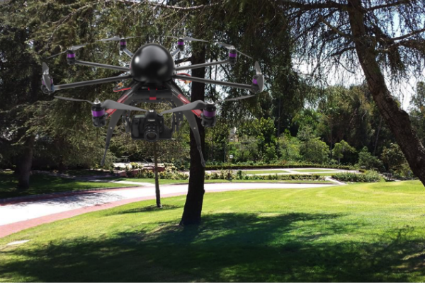 Drone at park